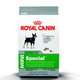 Royal Canin Mini Special Dry Dog Food