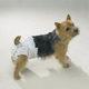 Clean Go Pet Disposable Doggy Diapers Xsmall