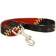 MLB Houston Astros Dog Leash