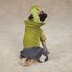 Casual Canine Frankenhound Dog Costume MD