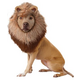 Animal Planet Lion Headpiece Dog Costume Small
