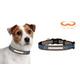 NFL Denver Broncos Reflective Dog Collar LG