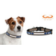 NFL New England Patriots Reflective Dog Collar LG
