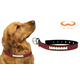 South Carolina Gamecocks Leather Dog Collar LG
