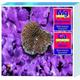 Tropic Marin Saltwater Calcium/Magnesium Test Kit