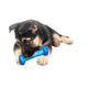 Hugs Pet Hydro Fetch Dog Toy