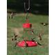 Dr JBs Hummingbird Feeder Red