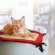 KONG Active Cat Play Mat