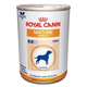 Royal Canin Mature Consult Can Dog Food 24pk
