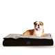 KH Mfg Feather Top Black/Gray Ortho Dog Bed Large