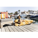 Majestic Outdoor Yellow Coral Rectangle Pet Bed LG