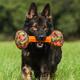 MajorDog Barbell Fetch Dog Toy Large