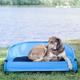 Gen7Pets Cool Air Trailblazer Blue Pet Cot Large