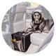 Pet Therapeutics OrthoPetic Backseat Extender