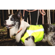 Hurtta Polar Visibility Dog Vest XXS Yellow