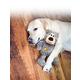 KONG Wild Knots Plush Bear Dog Toy X-Small
