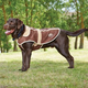 WeatherBeeta Burghley Dog Coat 12