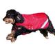 Rambo Duo Dog Blanket XXX-Small Red/Black