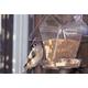 Window Cafe Birdhouse