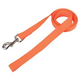 Single Ply Nylon Lead 1in x 6ft Bright Orange