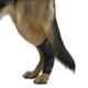 Kruuse Rehab Dog Hock Protector X-Large