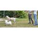 Pet Life Reflective Dog Leash/Harness Large Orange