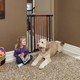 Midwest Steel Pet Gate with Wood Door 39in Tall