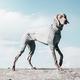 Hurtta Carbon Grey Dog Body Warmer 8S