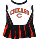 Chicago Bears Cheerleader Dog Dress Medium