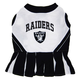 Oakland Raiders Cheerleader Dog Dress XSmall