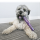 KONG Squeezz Confetti Stick Dog Toy Large