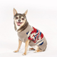 Pendleton Mountain Majesty Dog Sweater XSmall