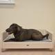 New Age Pet ecoFLEX Antique Raised Dog Bed XLarge