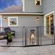 Carlson Pet Outdoor Super Pet Gate