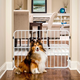 Carlson Pet Tuffy Expandable Gate with Pet Door