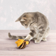 KONG Active Yarnimals Cat Toy