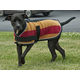 Intrepid Traditional Pattern Dog Coat 32