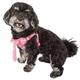 Pet Life Chichi Shaggy Dog Harness XSmall
