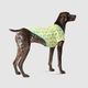 Canada Pooch Pineapples Follow Me Dog Tee 16