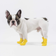 Canada Pooch Yellow Wellies Dog Boots XSmall