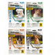Shieldtec Plus for Dogs 4 Month Over 66lbs