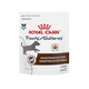 Royal Canin Gastrointestinal Canine Treats
