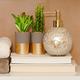 Plantes décoratives collection « Succulent »