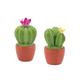 Décor cactus fleurissant