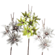 Collection « Desert Star Aster » par Torre & Tagus