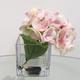 Hydrangée rose avec vase carré par Gino Signature