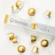 Capsules Belmio « Allegro» de première qualité compatibles avec Nespresso