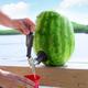 Ensemble à fût pour melon d'eau