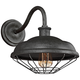 Lennex 12 1/2 inch High Slated Gray Metal Indoor-Outdoor Wall Light