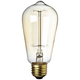 25 Watt Edison Style Decorative Light Bulb